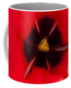 Tulip Macro 1 Coffee Mug