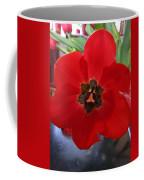 Tulip Mania 20 Coffee Mug