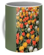 Tulip Stretch Coffee Mug