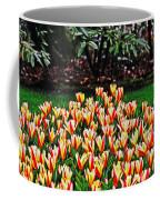 Tulip Stripe Garden Coffee Mug