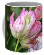 Tulip Time Pink And White Coffee Mug