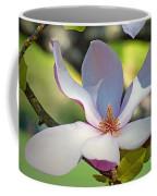 Tulip Tree Bloom Coffee Mug