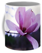 Tulip Tree Blooming Coffee Mug