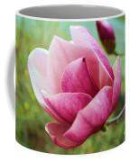 Tulip Tree In Bloom Coffee Mug