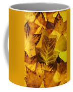 Tulip Tree Leaves In Autumn Coffee Mug