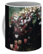 Tulipans Coffee Mug