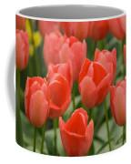 Tulips 33 Coffee Mug