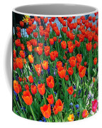 Tulips Are A Turkish Flower Bytopkapi Palace In Istanbul-turkey Coffee Mug