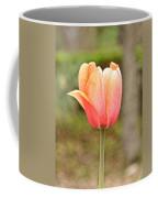 Tulips At Thanksgiving Point - 18 Coffee Mug