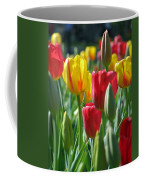Tulips - Field With Love 22 Coffee Mug