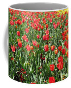 Tulips - Field With Love 61 Coffee Mug