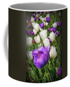 Tulips In Purple And White Coffee Mug