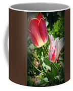 Tulips In Red And White Coffee Mug