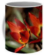 Tulips On Fire Coffee Mug
