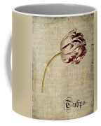 Tulips - S01bt2t Coffee Mug