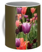 Tulips Welcome Spring Coffee Mug