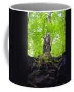 Tunnel Tree Coffee Mug
