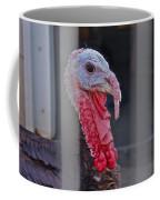 Turkey 1 Coffee Mug