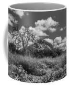 Turkey Hill Bw Coffee Mug