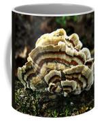 Turkey Tail Fungi Coffee Mug