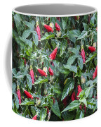 Turks Cap And Rain Drops Coffee Mug