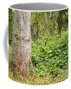 Turk's Cap And Tree Coffee Mug