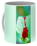 Turks Cap With Visitors Coffee Mug