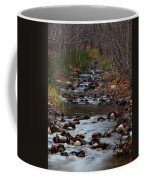 Turner Falls Stream Coffee Mug