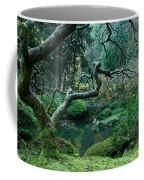 Turning Toward Winter Coffee Mug