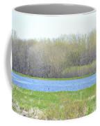 Turquoise Marsh Coffee Mug