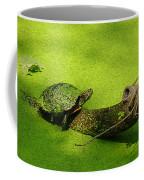 Turtle-190 Coffee Mug