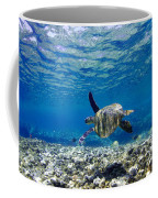 Turtle Cruise Coffee Mug by Sean Davey