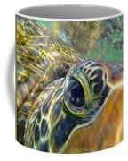 Turtle Eye Coffee Mug