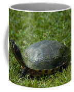 Turtle Grass Coffee Mug