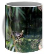 Turtle Grotto Coffee Mug