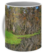 Turtle Haven Coffee Mug