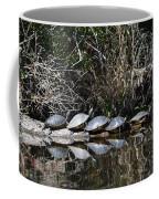 Turtle Lineup Coffee Mug