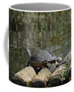Turtle On A Raft Coffee Mug