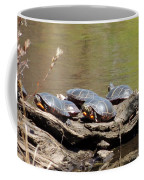 Turtles Coffee Mug
