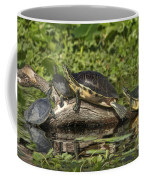Turtles Sunning Coffee Mug