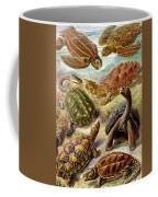 Turtles Turtles And More Turtles Coffee Mug