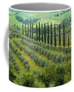 Tuscan Panoramic 3 Coffee Mug