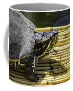 Tutle On Raft Coffee Mug