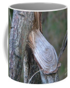 Twigs Coffee Mug