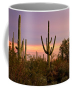 Twilight After Sunset In The Cactus Forests Of Saguaro National Park Coffee Mug