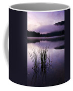 Twilight Glow Coffee Mug