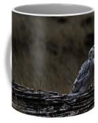 Twilight Owl Coffee Mug