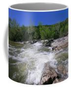 Twin Falls Austin Coffee Mug