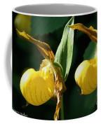 Twin Slippers Coffee Mug