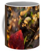 Twin Spotted Wintergreen Pods Coffee Mug